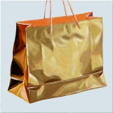 Gold bag #9