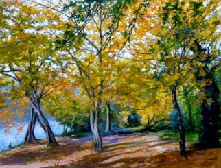 Highams Park boatlake autumn