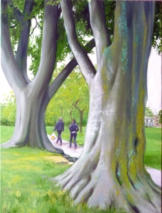 SP two beech trees 1 (768x1024)