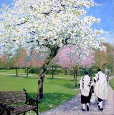 SP white cherry jews