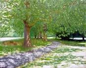 SPdappled shade large (1024x814)